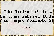 ¡Un Misterio! Hijo De <b>Juan Gabriel</b> Duda Que Hayan Cremado Al ...