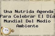 Una Nutrida Agenda Para Celebrar El <b>Día Mundial Del Medio Ambiente</b>