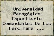 <b>Universidad Pedagógica</b> Capacitaría Comandantes De Las Farc Para ...