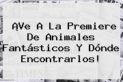¡Ve A La Premiere De <b>Animales Fantásticos Y Dónde Encontrarlos</b>!