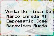 Venta De Finca De Narco Enreda Al Empresario José Benavides Rueda