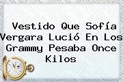 Vestido Que <b>Sofía Vergara</b> Lució En Los Grammy Pesaba Once Kilos