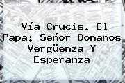<b>Vía Crucis</b>. El Papa: Señor Donanos Vergüenza Y Esperanza