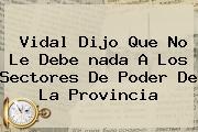 Vidal Dijo Que No Le Debe <b>nada</b> A Los Sectores De Poder De La Provincia