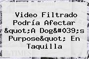 "Video Filtrado Podría Afectar ""<b>A Dog's Purpose</b>"" En Taquilla"