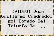 (VIDEO) Juan Guillermo <b>Cuadrado</b>: <b>gol</b> Dorado Del Triunfo De ...