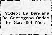 Video: La <b>bandera De Cartagena</b> Ondea En Sus 484 Años