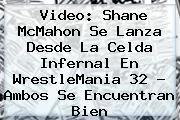 Video: <b>Shane McMahon</b> Se Lanza Desde La Celda Infernal En WrestleMania 32 ? Ambos Se Encuentran Bien