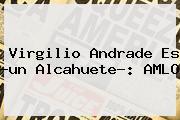 <b>Virgilio Andrade</b> Es ?un Alcahuete?: AMLO