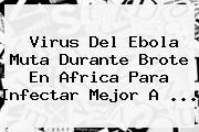 Virus Del <b>Ebola</b> Muta Durante Brote En Africa Para Infectar Mejor A ...