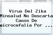Virus Del Zika Minsalud No Descarta Casos De <b>microcefalia</b> Por <b>...</b>