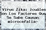 Virus Zika: ¿cuáles Son Los Factores Que Se Sabe Causan <b>microcefalia</b>?