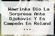 <b>Wawrinka</b> Dio La Sorpresa Ante Djokovic Y Es Campeón En Roland <b>...</b>