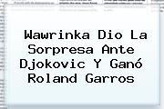 <b>Wawrinka</b> Dio La Sorpresa Ante Djokovic Y Ganó Roland Garros