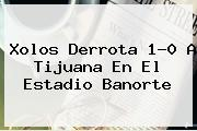 Xolos Derrota 1-0 A <b>Tijuana</b> En El Estadio Banorte