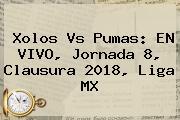 Xolos Vs Pumas: EN <b>VIVO</b>, Jornada 8, Clausura 2018, Liga MX