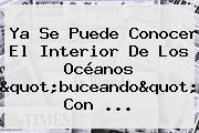 Ya Se Puede Conocer El Interior De Los Océanos &quot;buceando&quot; Con <b>...</b>