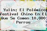 <b>Yulin</b>: El Polémico <b>festival</b> Chino En El Que Se Comen 10.000 Perros