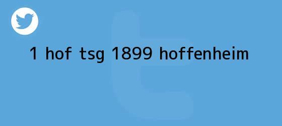 trinos de <b>1 HOF TSG 1899 Hoffenheim</b>
