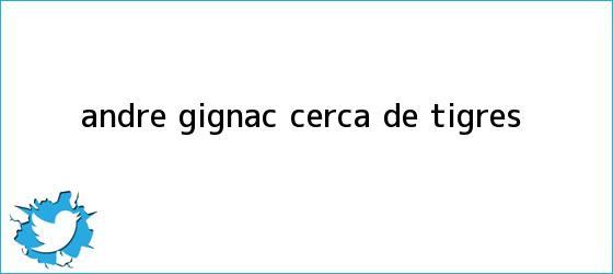 trinos de André <b>Gignac</b>, cerca de Tigres