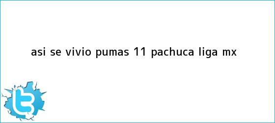 trinos de ASÍ SE VIVIÓ   <b>Pumas</b> 1-1 <b>Pachuca</b>  <b> Liga MX