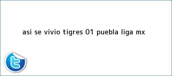 trinos de Así se vivió   <b>Tigres</b> 0-1 <b>Puebla</b>  <b> Liga MX