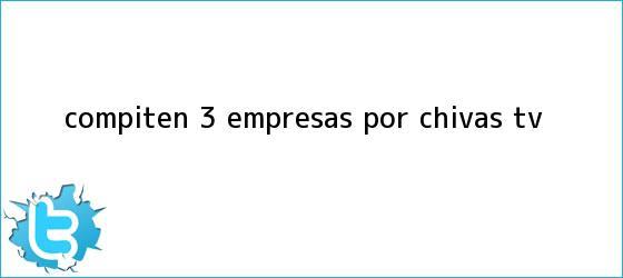 trinos de Compiten 3 empresas por <b>Chivas TV</b>