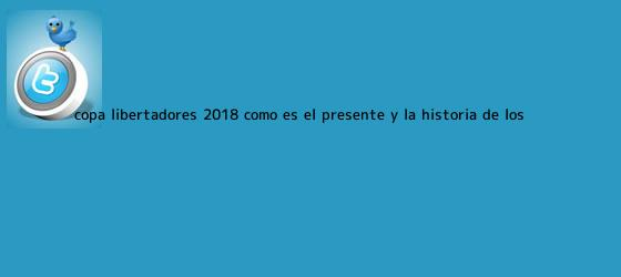 trinos de <b>Copa Libertadores 2018</b>: cómo es el presente y la historia de los ...