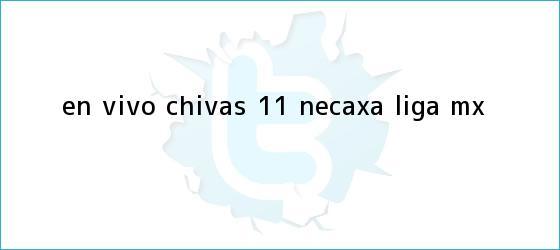 trinos de EN VIVO | <b>Chivas</b> 1-1 <b>Necaxa</b> | Liga MX