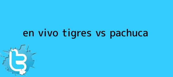 trinos de ¡En Vivo! <b>Tigres vs Pachuca</b>