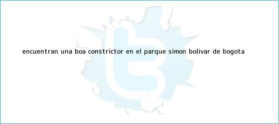 trinos de Encuentran una <b>boa constrictor</b> en el parque Simón Bolívar de Bogotá