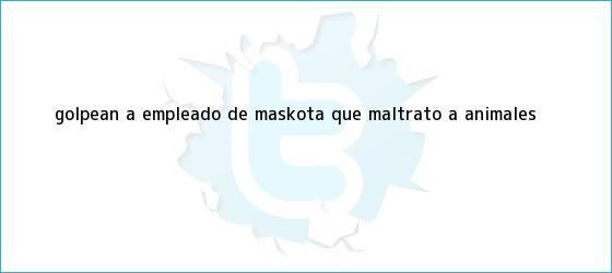 trinos de Golpean a empleado de <b>Maskota</b> que maltrató a animales