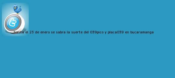 trinos de Hasta el 23 de enero se sabrá la suerte del &#039;<b>pico y placa</b>&#039; en <b>Bucaramanga</b>