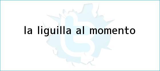 trinos de <i>La Liguilla al Momento</i>