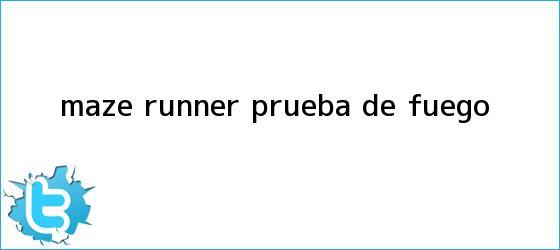 trinos de <b>Maze Runner</b>: <b>Prueba de fuego</b>