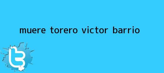 trinos de Muere torero <b>Víctor Barrio</b>