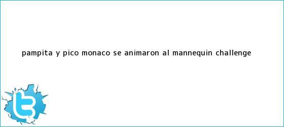 trinos de Pampita y Pico <b>Mónaco</b> se animaron al Mannequin Challenge