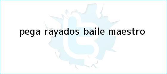 trinos de Pega <b>Rayados</b> Baile ?Maestro?