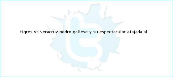 trinos de <b>Tigres vs</b>. <b>Veracruz</b>: Pedro Gallese y su espectacular atajada al ...