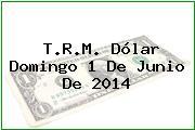 T.R.M. Dólar Domingo 1 De Junio De 2014