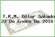 T.R.M. Dólar Sábado 23 De Enero De 2016