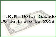 T.R.M. Dólar Sábado 30 De Enero De 2016