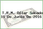 T.R.M. Dólar Sábado 11 De Junio De 2016