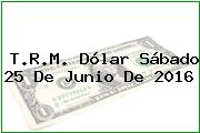 T.R.M. Dólar Sábado 25 De Junio De 2016