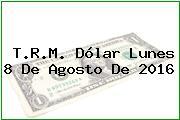 T.R.M. Dólar Lunes 8 De Agosto De 2016