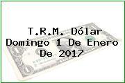 T.R.M. Dólar Domingo 1 De Enero De 2017