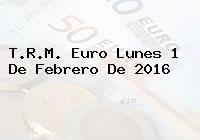 T.R.M. Euro Lunes 1 De Febrero De 2016