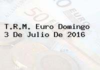 T.R.M. Euro Domingo 3 De Julio De 2016